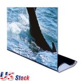 "US Stock- 2pcs 33"" W x 79"" H Whale Shape Good Quality Roll Up Banner Stand (Stand Only)"
